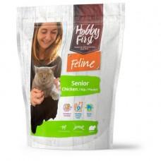 Feline Senior Kip