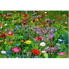 MegaFlower 100% bloemen