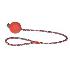 Bal aan touw