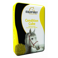 Equifirst Condition Cube