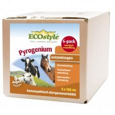 ECOstyle Pyrogenium 6 pack