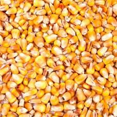 Mais geschoond