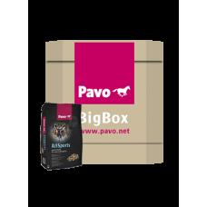 Pavo AllSports Big Box