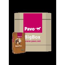 Pavo BasicPlus Big Box