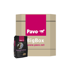 Pavo EnergyControl Big Box