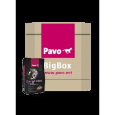 Pavo EnergyControl Big Box